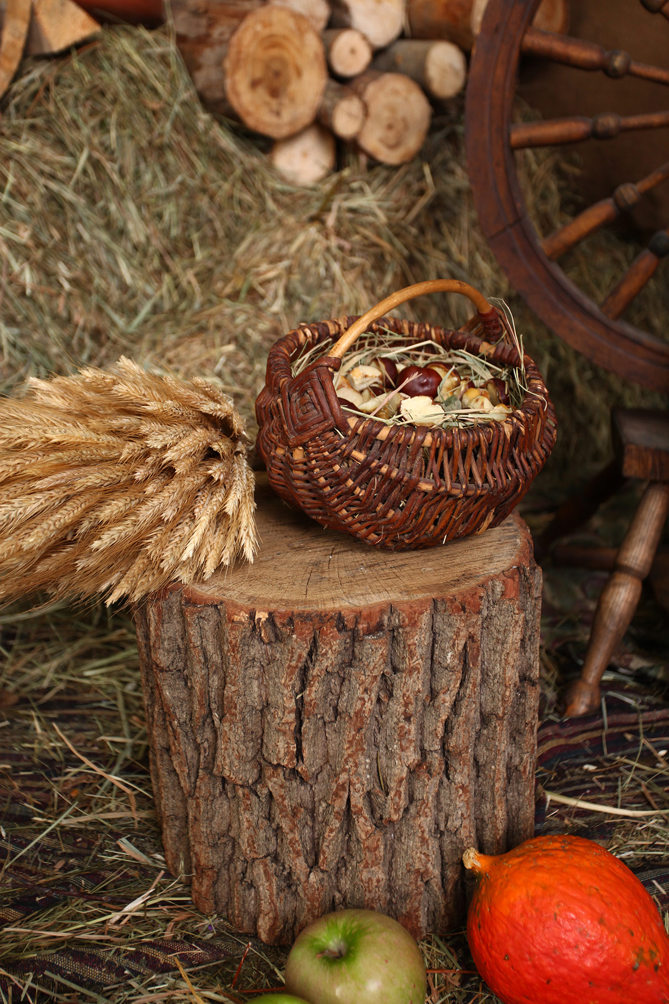 реквизит пенёк для деревянной фото зоны в студии киев